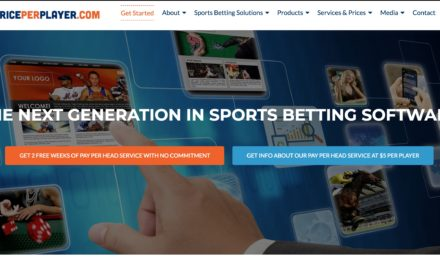 PricePerPlayer.com Bookie PPH Review