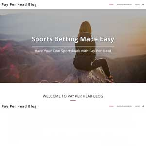 Sports Betting Made Easy