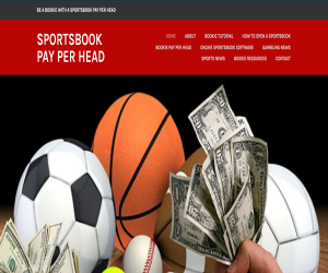 Sportsbook Pay Per Head Blog