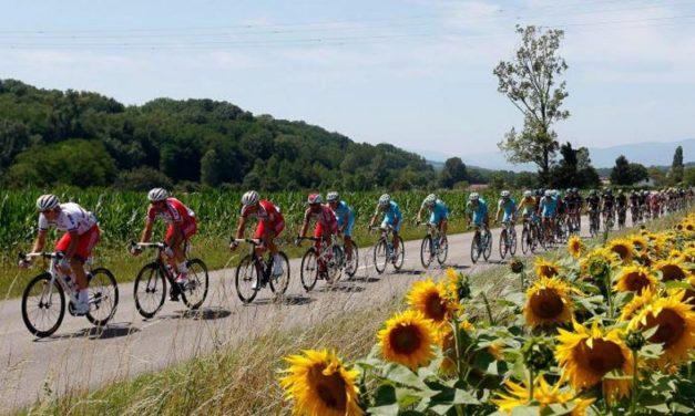 Tour de France Betting Update