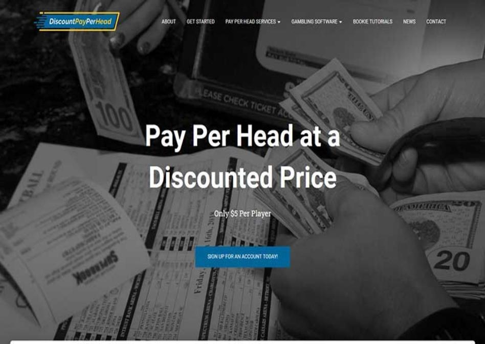 DiscountPayPerHead.com Review